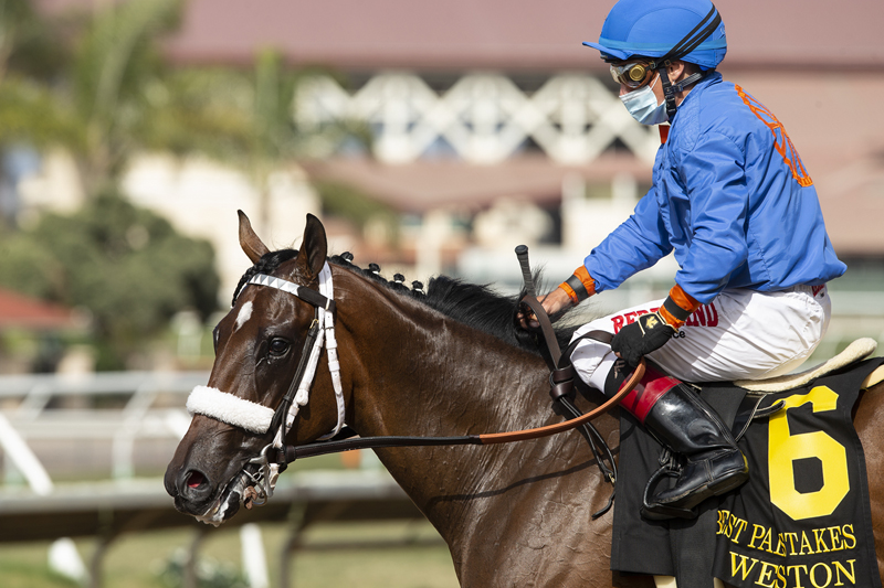 Photo of Weston Gets Up By a Neck in Del Mar's Best Pal Stakes