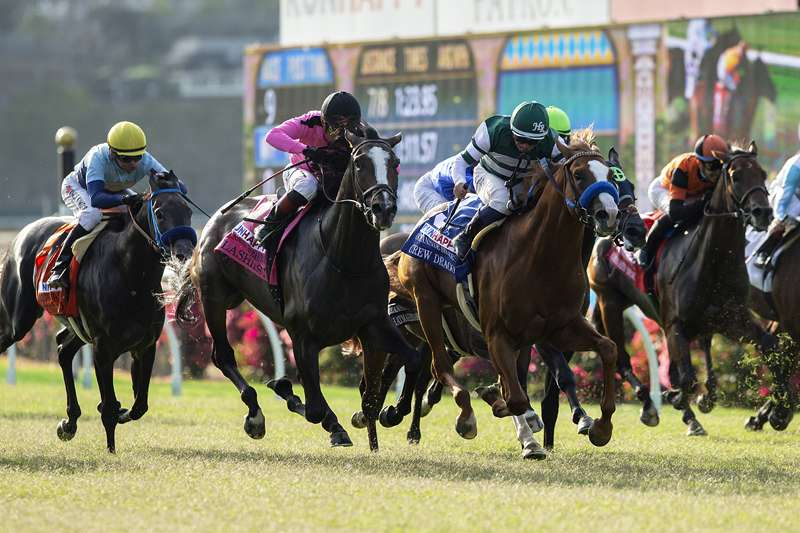 Photo of Pair of Graded Grass Stakes Top Program Saturday at Del Mar