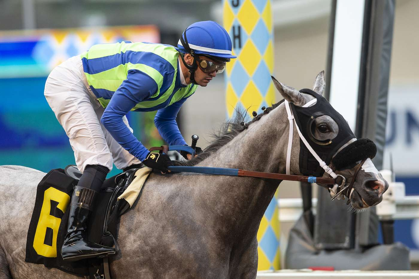 Photo of None Above the Law Clicks in Real Good Deal Friday at Del Mar