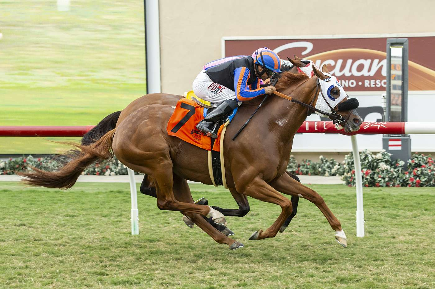 Photo of Rijeka Up in Last Jump Thursday; Pick Six Carryover Now at $1,751,883
