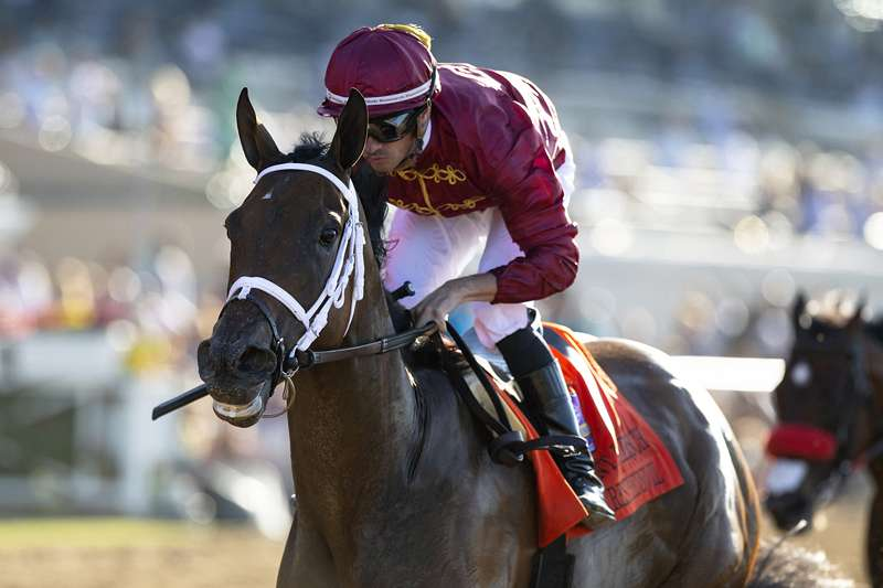 Photo of Favored Shedaresthedevil Best in Sunday's Hirsch at Del Mar