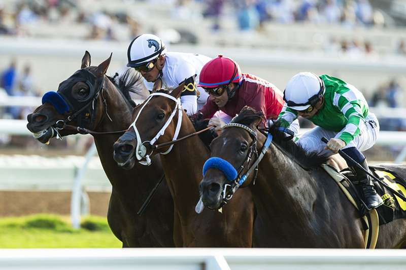 Photo of Zoffarelli Moved Up to First in La Jolla Handicap at Del Mar