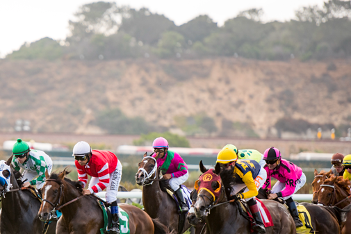 """Photo of Del Mar Wagering Menu has 17 Different Ways to """"Get Down"""""""