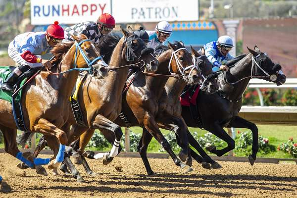 Photo of Del Mar Ups Purses 10% Following Strong Opening Session