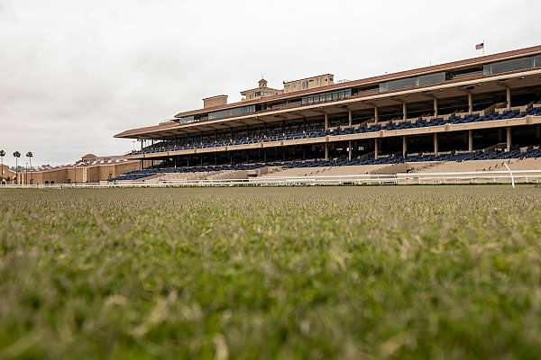 Photo of Del Mar Modifies Some Starting Gate, Turf Rail Positions for More Accurate Distance and Timing Data