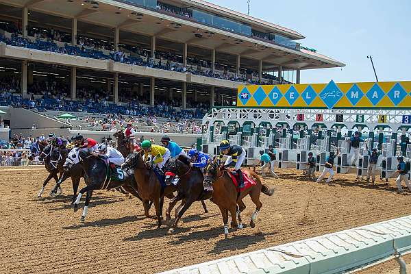 Photo of Monday's Pick Six Bet at Del Mar Likely to be Worth $6-Million-Plus