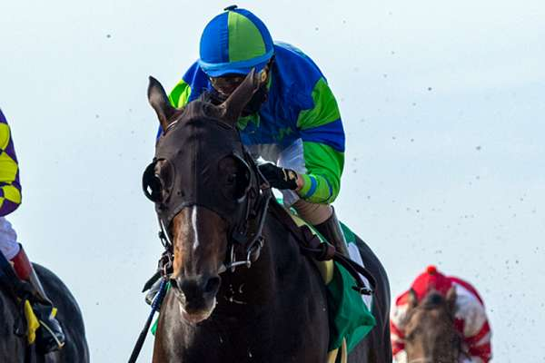 Photo of Extra Hope Outruns Midcourt in Saturday's Native Diver Stakes