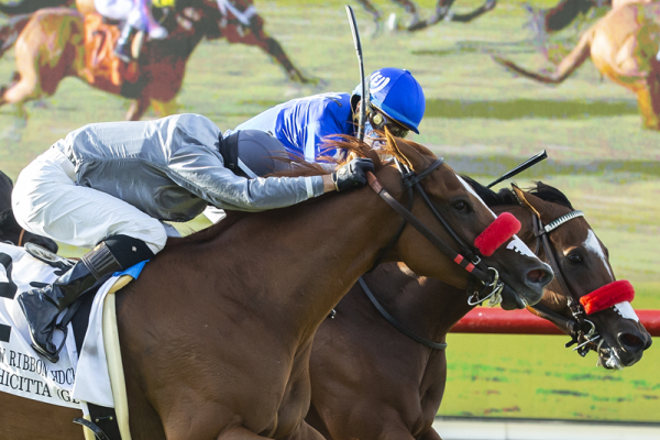 Photo of Bodhicitta Takes Yellow Ribbon by a Nose on Del Mar Turf