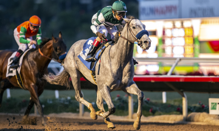 Single Ticket Winner Cashes for $428,459 in Del Mar's Pick Six