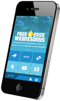 exotic wager calculator android